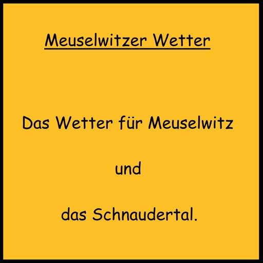 Meuselwitzer Wetter icon