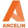 Cabinet Ancelin