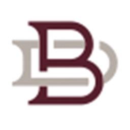 Borgstadt App