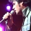 Chris MacDonald Elvis Concert
