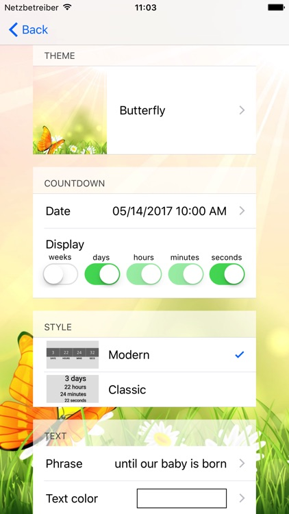 Baby Countdown 2018 screenshot-4