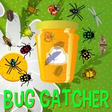 Activities of Bug Catcher Game
