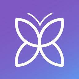 Papillon - Video Q&A