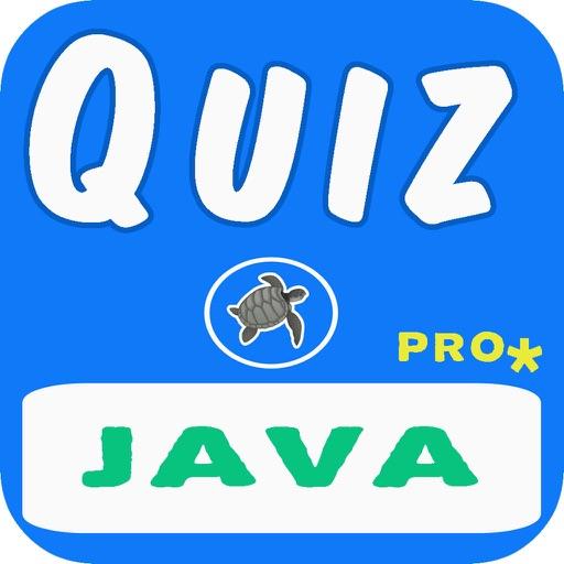 Java Quiz Questions Pro by Tortoises Inc