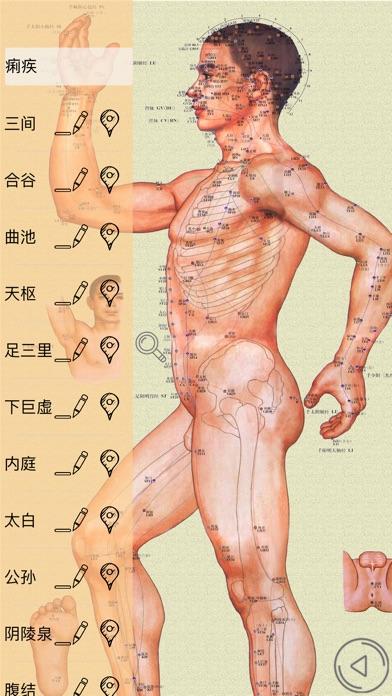 人体穴位—专业版按摩针灸神器