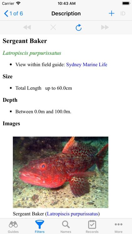 Sydney Marine Life screenshot-5