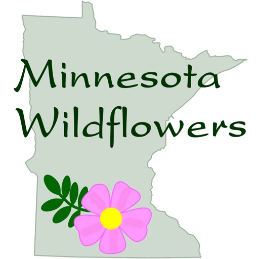 Minnesota Wildflowers Info.