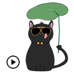 Animated Lovely Black Cat