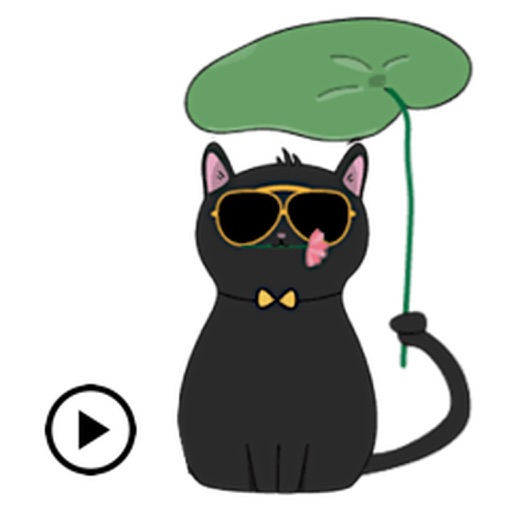 Animated Lovely Black Cat