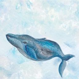الحوت السعودي