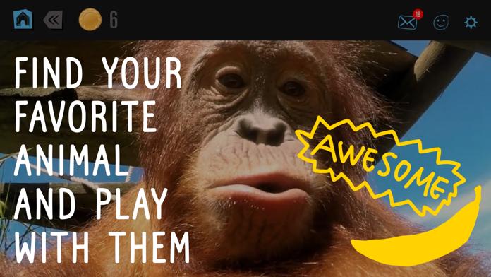 Virry game: Learn wild animals Screenshot