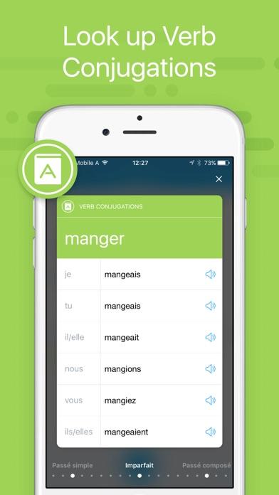 iTranslate Translator app image