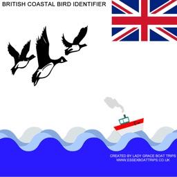 British Coastal Bird ID