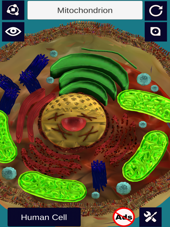 3D Cell + Screenshot 0