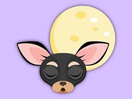 Animated Black Tan Chihuahua
