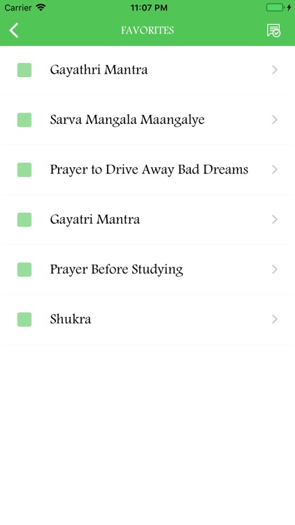Hindu Daily Prayers screenshot-5