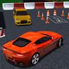 BUI THI HANG - Drive Smart: Parking Slot artwork