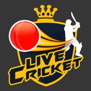 CrickHub: Live Cricket Scores and News IPL Special