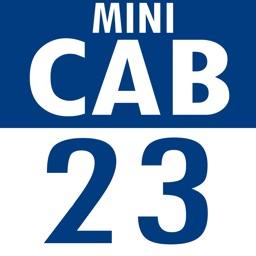 Cab 23 Passenger