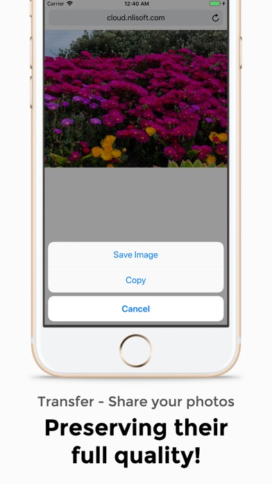 One Tap Share:Photo, File, Doc screenshot two