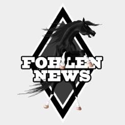 Fohlennews.de