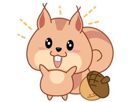 For those who love squirrels, Kwipi the cute squirrel is ready to make your chat more cheerful and amusing