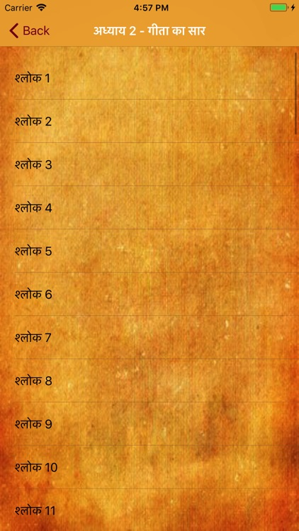 Shrimad Bhagavad Gita in Hindi screenshot-4