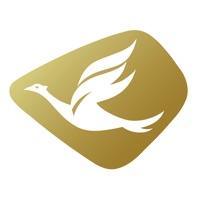 Goldenbird Corp