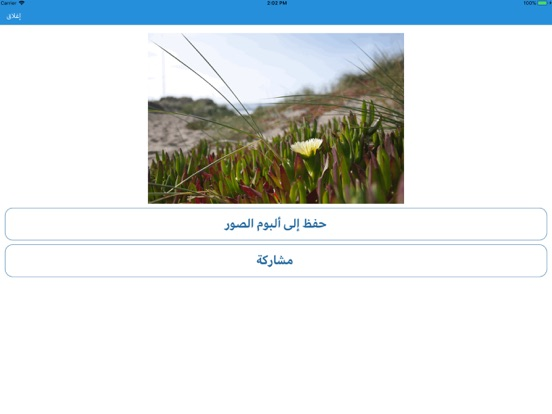 GIF تحويل الصور الى screenshot 5
