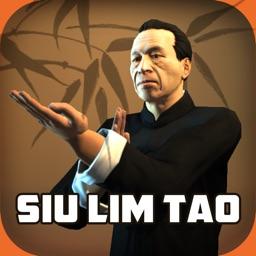 Ip Man Wing Chun Kung Fu SLTHD