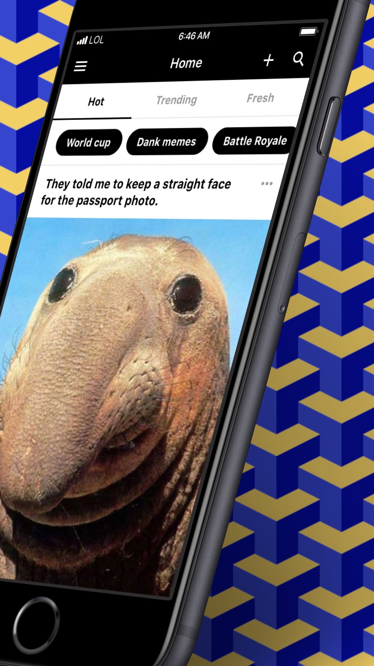 9GAG: Best LOL Pics & GIFs Screenshot