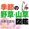 ロゴヴィスタ株式会社 - 季節の野草・山草図鑑 アートワーク