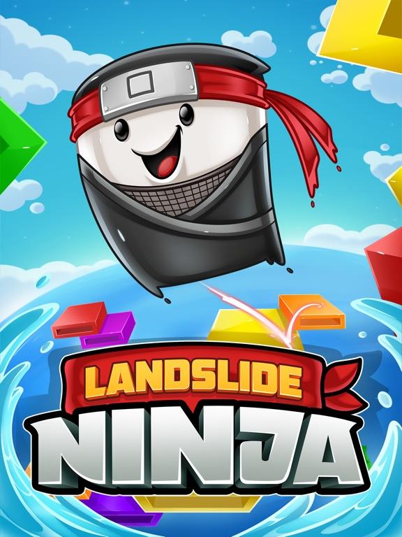 Landslide Ninja screenshot 6