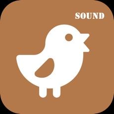 Activities of AnimalSound - English study