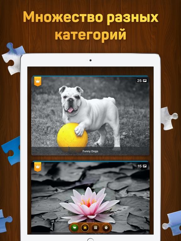 Пазлы и головоломки Скриншоты10
