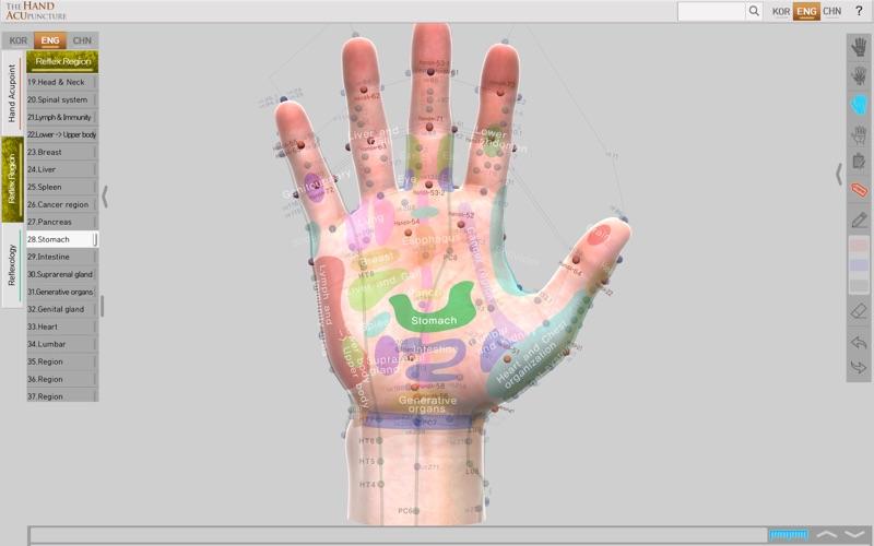 Hand Acupuncture скриншот программы 5