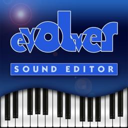 Evolver Editor