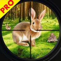 Codes for Wild Rabbit Hunting Simulator Hack