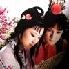 红楼梦刘兰芳-有声评书-全收藏