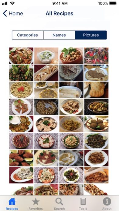 Screenshot for 100 Lebanese Recipes in Ecuador App Store
