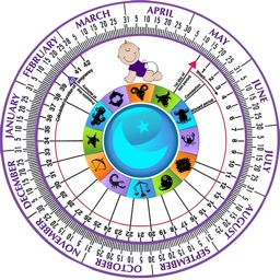 Pregnancy Wheel HD - Due Date Calculator
