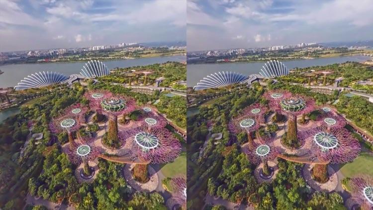 VR Gardens by the Bay