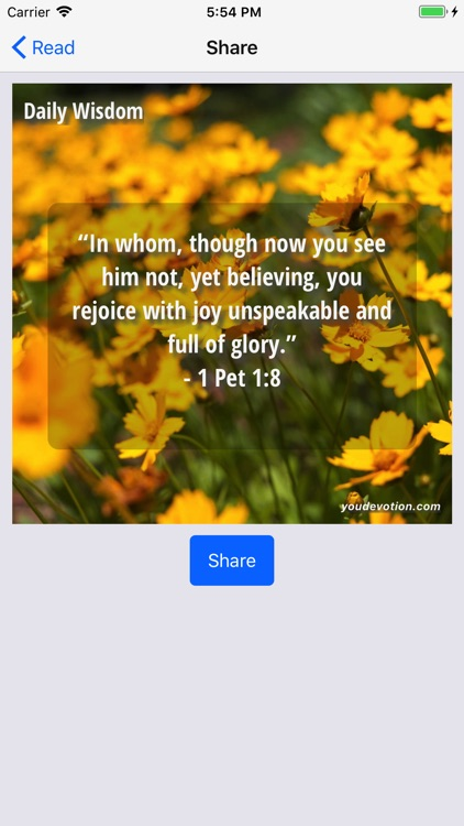 God's Daily Wisdom For You screenshot-2