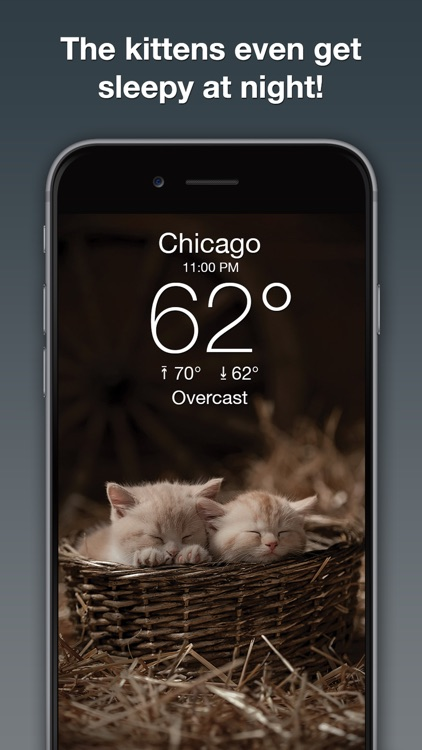 Weather Kitty: Forecast & Cats screenshot-3