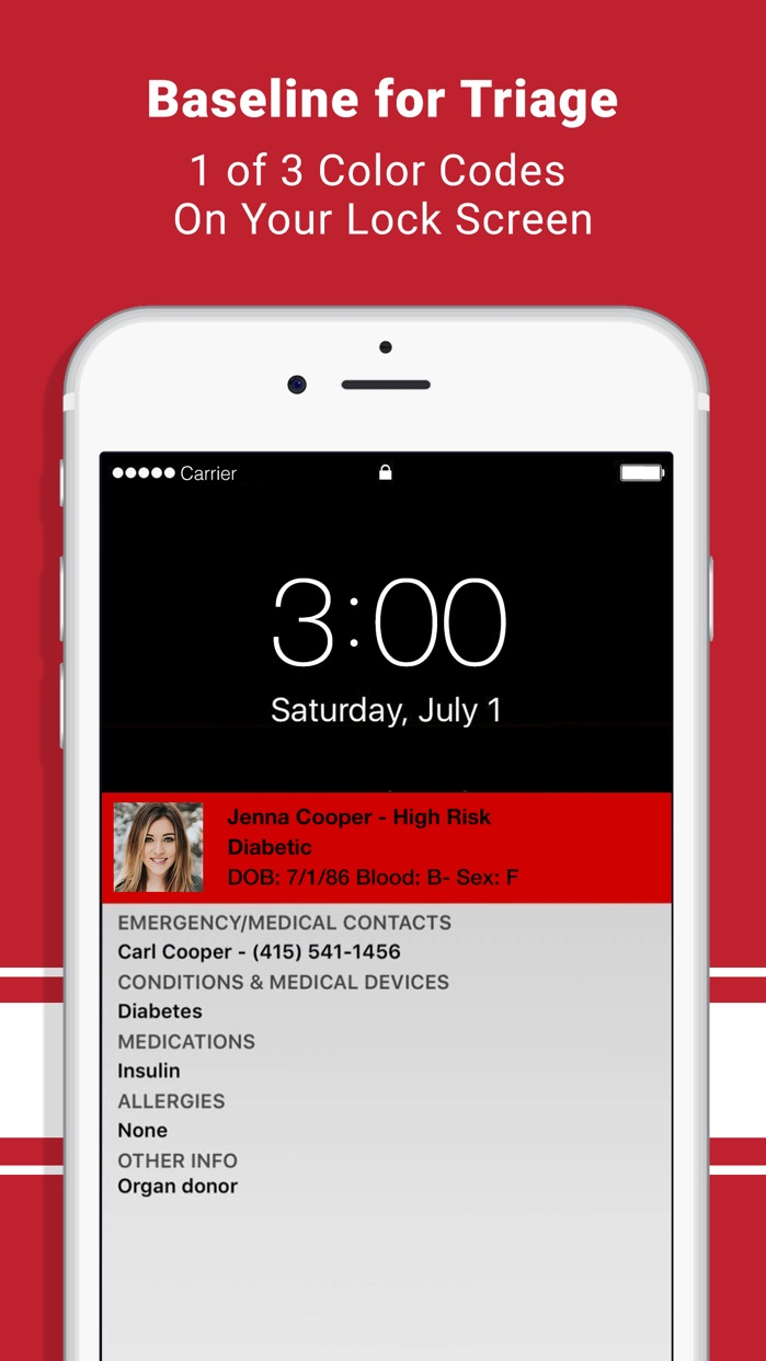 ICE Medical Standard Screenshot