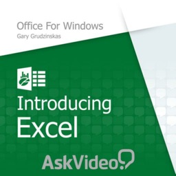 Excel Course For Office
