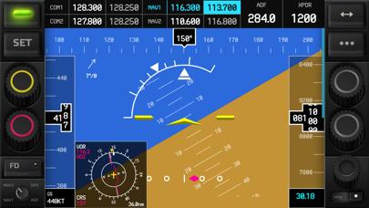 RemoteFlight GLASS screenshot two