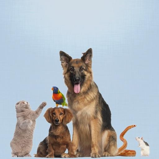 Vaccination Calendar / Petsdiary
