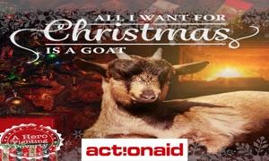 ActionAid Sweden Xmas Goats