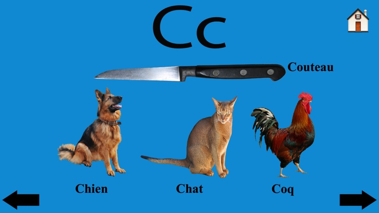 Learn French ABC Alphabets fun screenshot-3